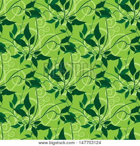 Green floral seamless vector pattern. Leaves and swirls. Eps10
