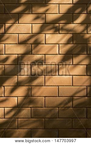 beautiful shadow drop of a leave and branch on red brick wall