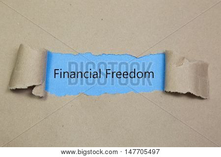 The text Financial Freedom appearing behind torn brown paper.