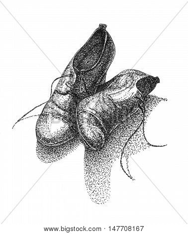 Illustration of woman's leather boots. Stipple hand drawn art of shoe.