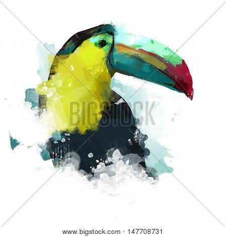 Watercolor bird, illustration Toucan, watercolor tropical bird