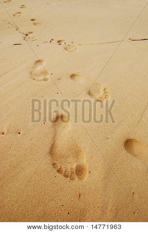 Footprints in the sand on caribbean beach