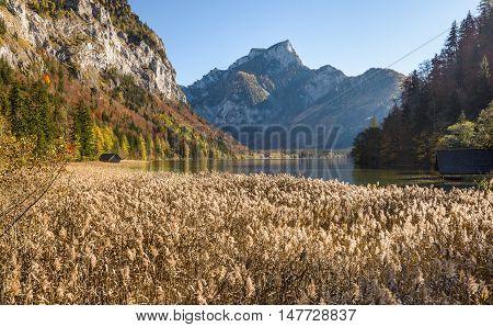 Autumn landscape with  mountain lake. Leopoldsteinersee, Styria, Austria.