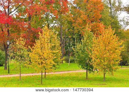 Park Kurakina Dacha early autumn in St.Petersburg Russia.