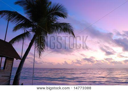 Beautiful caribbean beach sunset in Dominican Republic