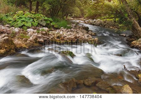 Gradac river gorge. Long exposure of white water rapids and waves with rocks and moss