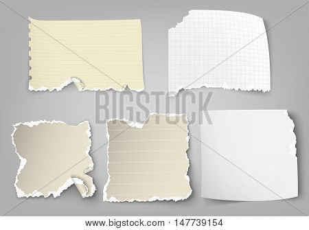 vector set of tear-off paper with ragged edges