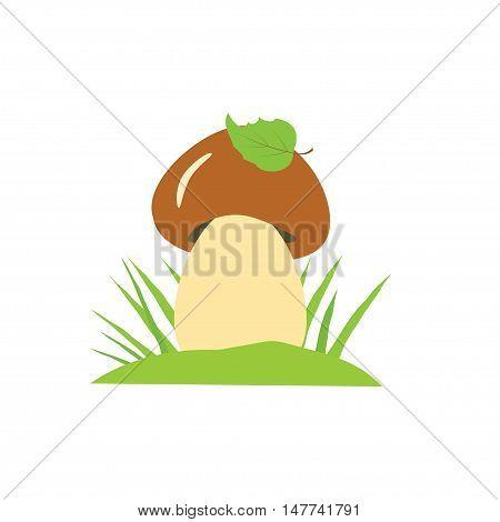 Vector illustration of mushroom with leaf and grass. Mushroom Illustration isolated on white background.