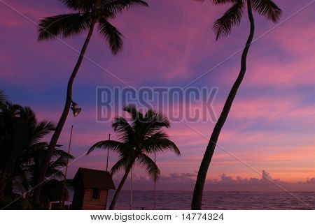 Beautiful caribbean beach sunset in Dominican Republic