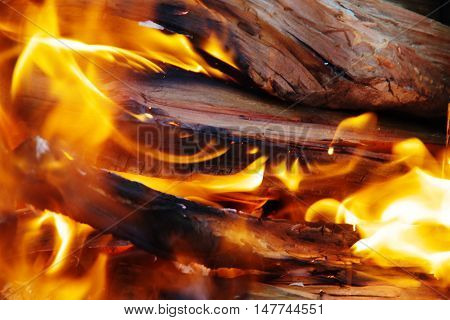 The fire in the brazier burning wood.