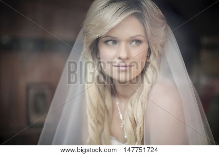 Portrait of beautiful young bride through window with deliberate soft focus effect