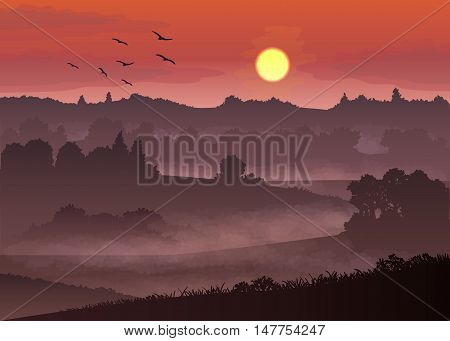 vector illustration with color misty landscape at sunset