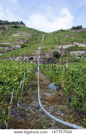 Famous train rail in German Wineyard Region Moselle River Winningen