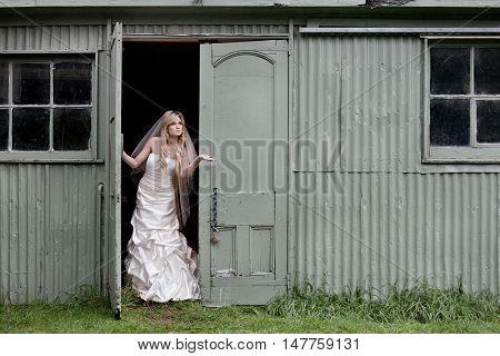 Bride Checks For Rain