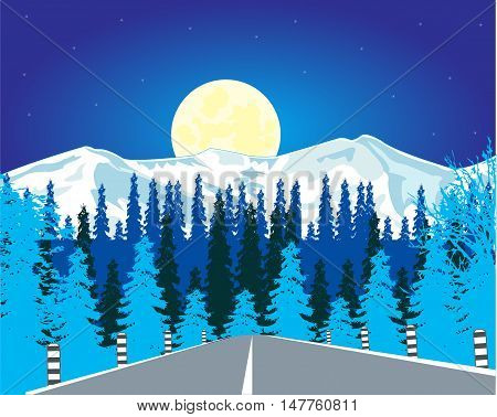 The Car road in wood in winter in the night.Vector illustration