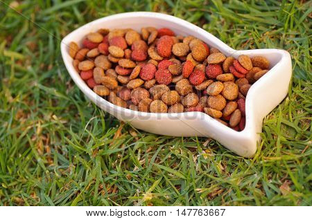 Closeup fish shaped white bowl with fresh dog food sitting on green grass, animal nutrition concept.