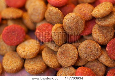 Closeup pile of fresh red and brown colored crunchy dog food.