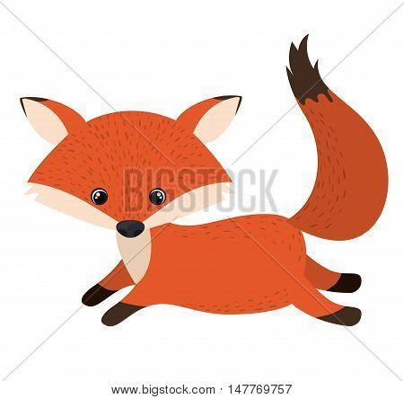 Fox cartoon icon. Forest animal theme. Isolated design. Vector illustration