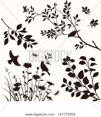 Set of decorative nature elements. Branches of tree, flower and birds silhouette