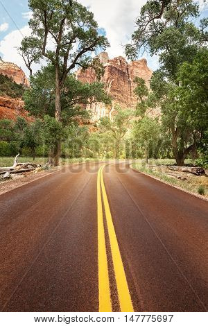 The road through Zion National Park Utah USA