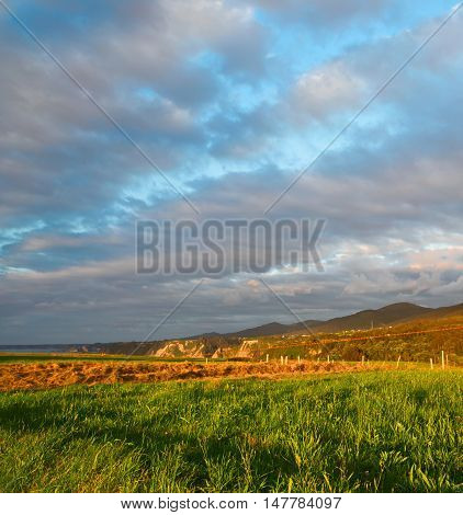 The field with a green and mowed grass at sunset. Picturesque beautiful clouds in the sky yellow straw in the distance the high ocean coast