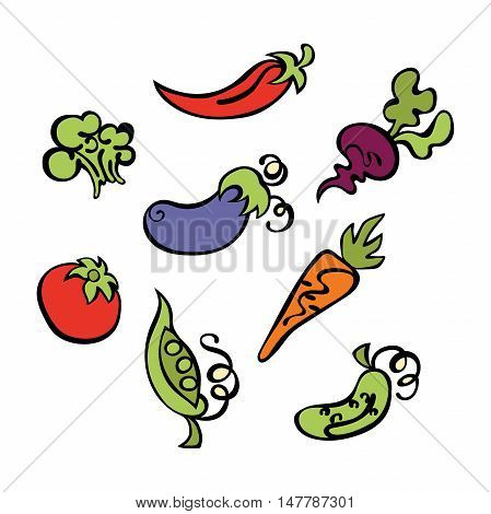Vegetables: tomatoes, eggplant, peas, cucumber, carrots, beets, broccoli and hot pepper. Isolated vector objects on white background.