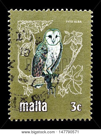MALTA - CIRCA 1981 : Cancelled postage stamp printed by Malta, that shows Barn owl.