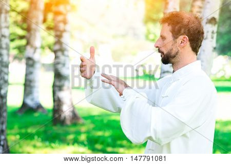 An Instructor Practice Of Tai Chi Chuan In The Park.