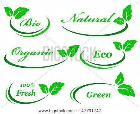 set of background with green leaf icon and design element