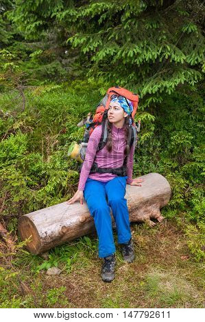 woman hiker rest in beautiful forest. Girl tourist resting of forest clearing during hike. Girl hiker with backpack sitting on log in the forest. Travel concept. Hiking