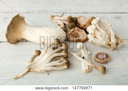 Assorted edible mushrooms on a vintage white table