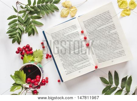 Autumn workspace. Composition of opened book, a cup of tea, red berries of a mountain ash.