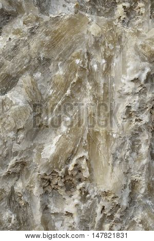 Gypsum Selenite Crystals Closeup of Crystals Avakas Gorge Akamas Cyprus