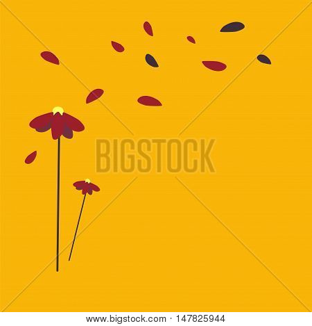 pretty red daisy on yellow background fly