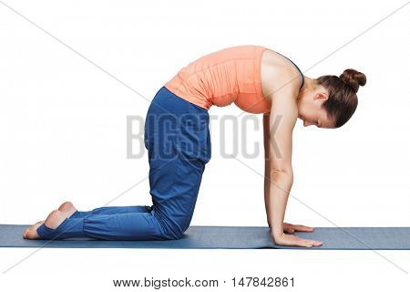 Beautiful sporty fit yogini woman practices yoga asana marjariasana - cat pose gentle warm up for spine (also called cat-cow pose) in studio isolated on white