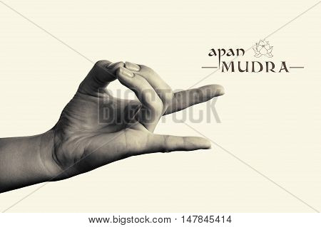 B/W image of woman hand in apan mudra. Gesture is isolated on toned background.