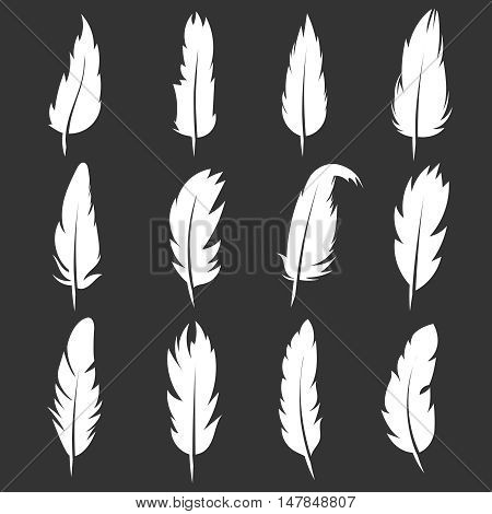 Vector feather vintage pens on black background. White quill silhouette for writing illustration