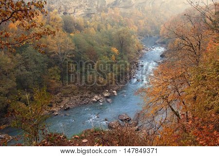 Warm autumn landscape of vast forest territory with rapid mountain river. Top point view