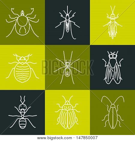 Insect line icon set made in trendy linear style on multicolored background. It can be used for web and mobile applications by exterminator service and pest control companies. Vector illustration.