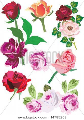 Abbildung mit rosa dekoration isoliert auf weißem Hintergrund