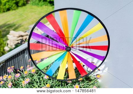 Nice Colourful colorful pinwheel in a flowerpot.