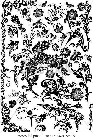 Floral Ornament-Elements-Auflistung, die isoliert auf weißem Hintergrund