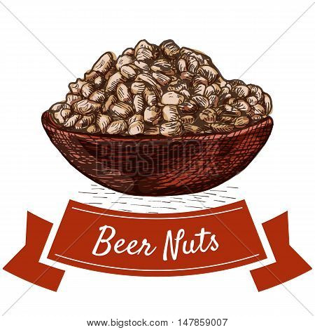 Beer nuts illustration. Vector colorful illustration of salted nuts.