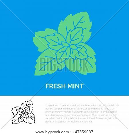 Modern vector flat icon of mint leaves. Fresh food logo. Flat symbol for peppermint gum. Freshness design element for site mint emblem. Organic products business logotype mint leaf illustration.