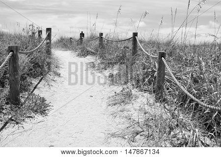 A sandy pathway to Turtle Beach in Siesta Keys, Florida.