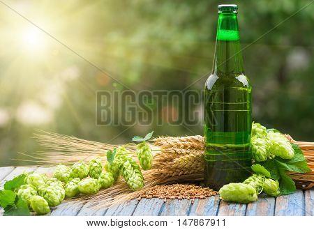 Green bottle of beer, hops, malt, barley ears standing on an old table on natural background