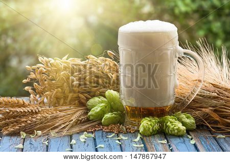 large glass of light beer, malt, hops, barley ears standing on an old wooden table dyeing, natural background