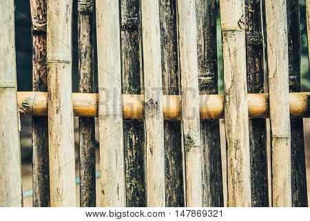 Close up bamboo wall bamboo wall background