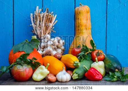Organic Fresh Vegetables - Pumpkin, Shallots, Garlic, Bell Pepper, Tomatoes, Celery, Zucchini, Yello