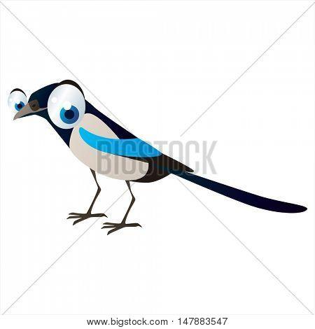 funny vector illustration of cute animal. Cartoon Magpie Bird